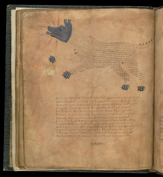 Sirius (The Dog Star), in a late Roman version of Cicero's 'Aratea'